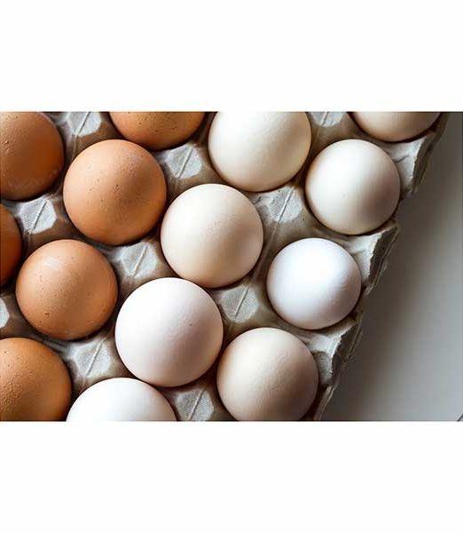 panchito-verduleria-huevos-de-campo-30-unidades